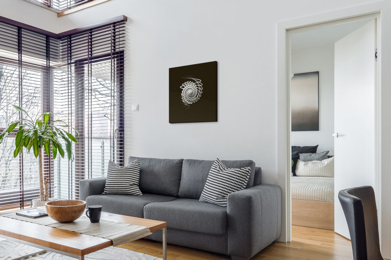 White Whirl Canvas Print